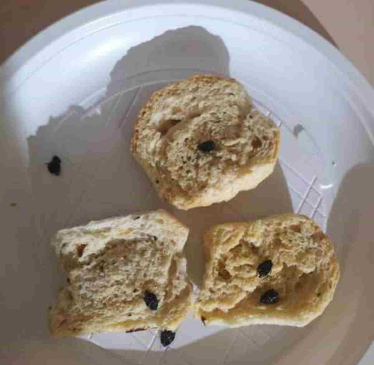 Nubi di insetti invadono spiagge e ristoranti in Salento: insetti nei piatti e fra i capelli