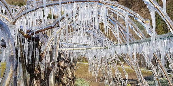Meteo: gran gelo dannoso nella notte