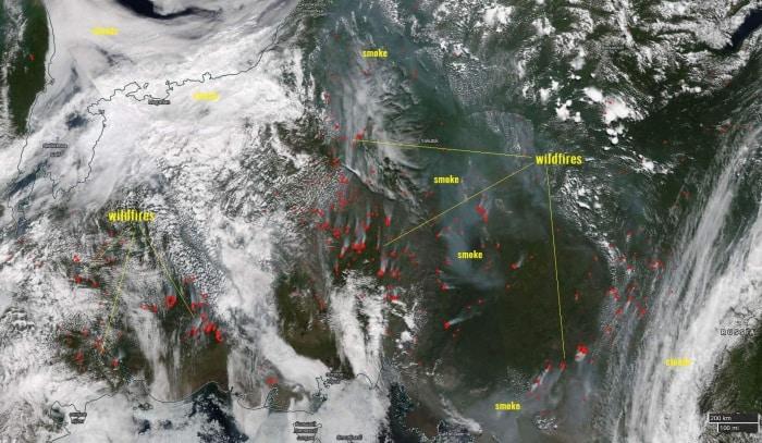 Siberia: aumentano gli incendi in maniera incontrollata, nube di fumo raggiunge USA e Canada