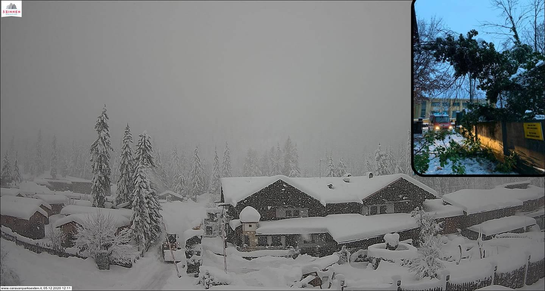 Nevicate estreme sulle Alpi e venti forti: slavine, alberi spezzati e black-out in atto