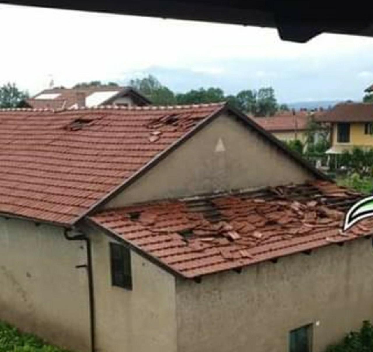 Forti temporali in Piemonte: alberi sradicati e danni ai tetti